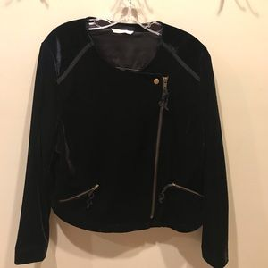 Soft Surroundings Velvet Moto Jacket Black